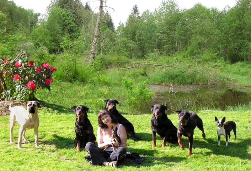Sandra and Dogs